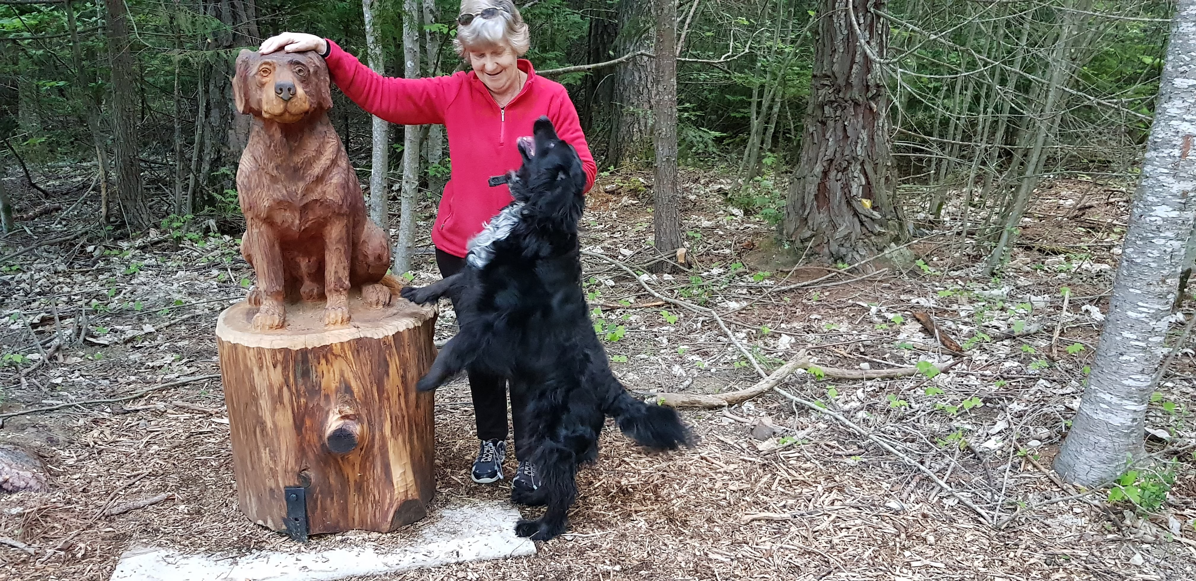 Hi this is Chico visiting the Art in the Forest on the Amble walkway here in Hanmer Springs.Unofficial greeter at ASPEN LODGE MOTEL  NZ