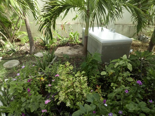 We are promoting The Pool House, Barbados as a romantic hideaway.  This newly installed feature is a bathtub in the garden.  The garden is private and we intend to curtain the bathtub with plants.Imagine, a glass of wine, in the tub, under the stars.